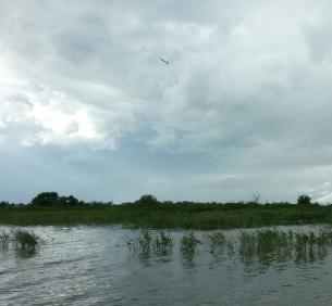 Название: Озеро Неро 3.jpg Просмотров: 30  Размер: 56.3 Кб