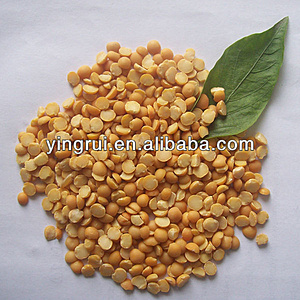 Нажмите на изображение для увеличения.  Название:dry_split_yellow_peas_from_china.jpg Просмотров:783 Размер:80.0 Кб ID:7980